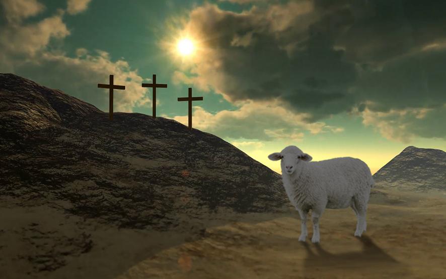 Resultado de imagen para cordero de Dios